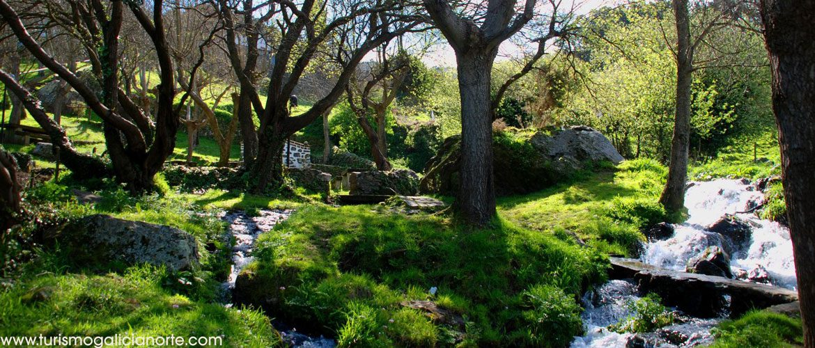 The spring in San Andres de Teixido with lots of trees and green